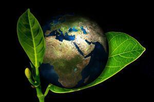 Wärmepumpen und Umweltschutz